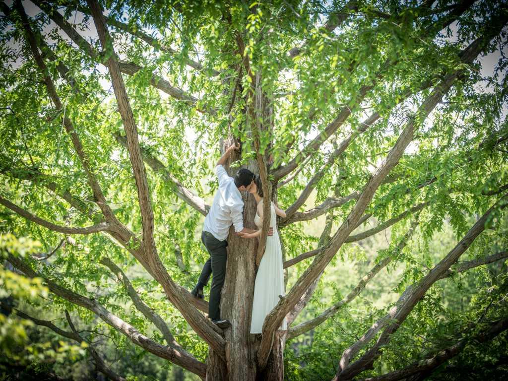 Click to Enlarge Annija's and Soorena's  Wedding Photo